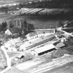 Gut und Kellerberg 1953