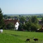 Blick vom Café Berghof inTussenhausen