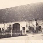 Beim Schnatterbauer in den 50ern