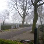 Neuer Friedhof im November 2012