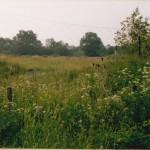 Gelände der Kläranlage um 1990