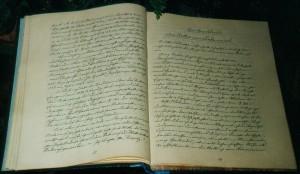 Chronik von Dünser