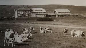 Belchenhaus im Jahre 1952