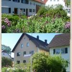 23.06.2016 Frau Schuhwerks Blumengarten