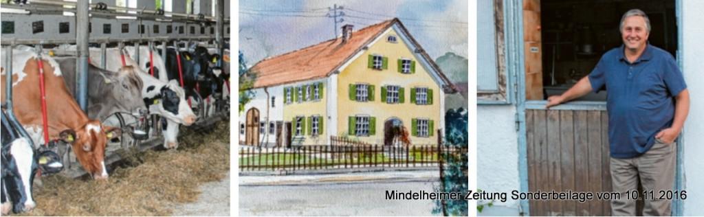 """Scheitle-Hof in Ettringen -  rechts der heutige """"Kraumer-Sattler"""""""