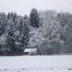 westlich von Ettringen - 01.12.2017