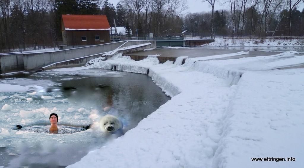 Nichts für Warmduscher: Eisschwimmer am Oberen Wehr