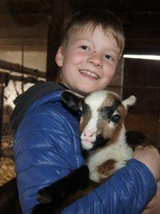 Tierliebe wird hier groß geschrieben: Der neunjährige Noah mit einem Lamm. Foto MZ