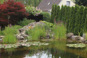 Ein Schwimmteich ist im Garten von Eva und Georg Blank in Ettringen eine Oase der Ruhe und Erholung  - Foto Mindelheimer Zeitung