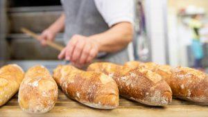 Viele handwerkliche Bäcker, aber auch Metzger, Bauern und Wirte fürchten, dass es bald keine Betriebe mehr wie die ihren gibt.