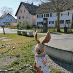 Da staunt sogar der Osterhase!