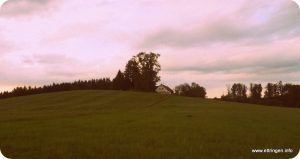 Pfandzelter-Anwesen auf dem Kusterberg