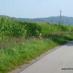 Radweg nach Siebnach - Karte Punkt 2